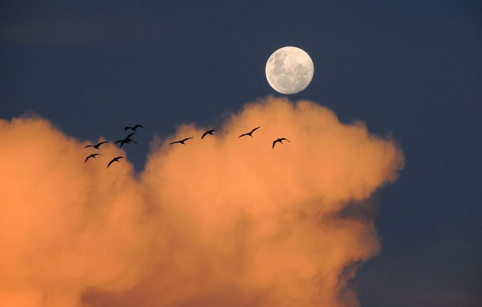 moon-323425_960_720
